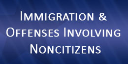 Immigration and Offenses Involving Noncitizens